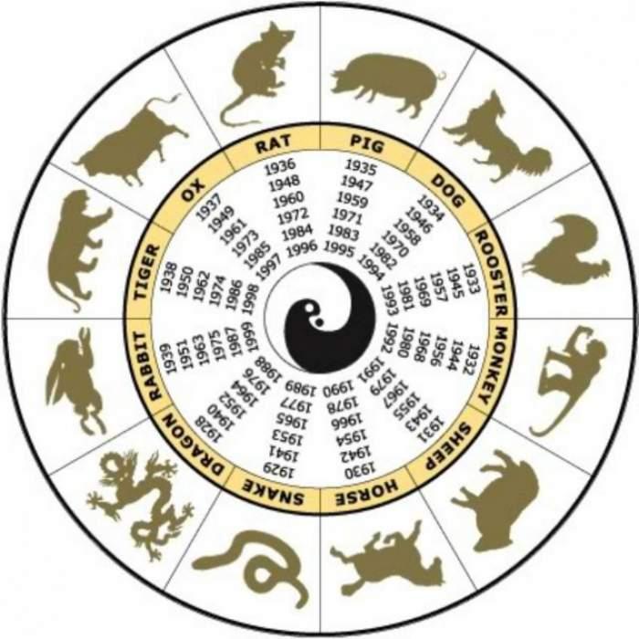 Horoscop chinezesc pentru vineri, 15 noiembrie 2019. Iepurii devin sufletul petrecerii