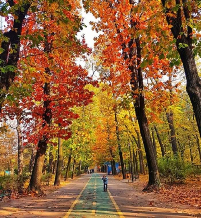 Vremea în București, duminică, 10 noiembrie. Temperaturi peste normalul acestei perioade