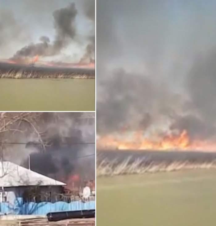 VIDEO / Incendiu puternic, joi după-amiază, în Delta Dunării. Flăcările se înteţesc de la un minut la altul din cauza vântului