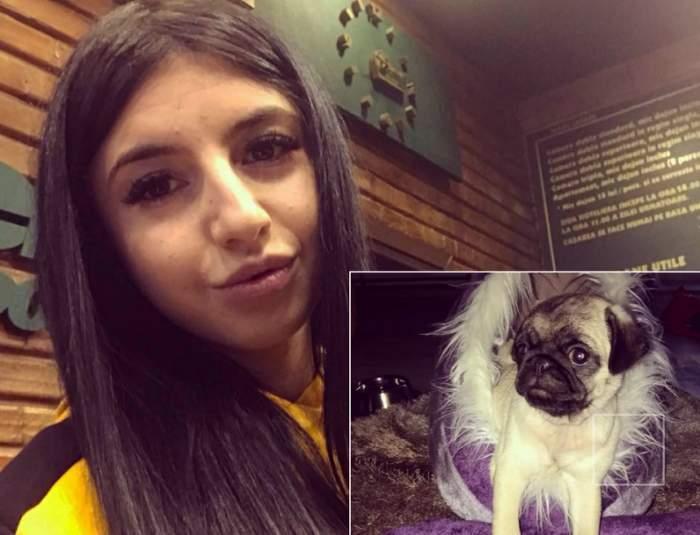 Ce s-a întâmplat cu câinele Valentinei, tânăra incendiată de iubit în Buzău! La cine a ajuns după ce Anisia l-a salvat din incendiu