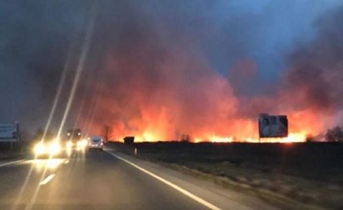 Incendiu de vegetație de proporții! Traficul pe DN 1 este complet blocat. VIDEO
