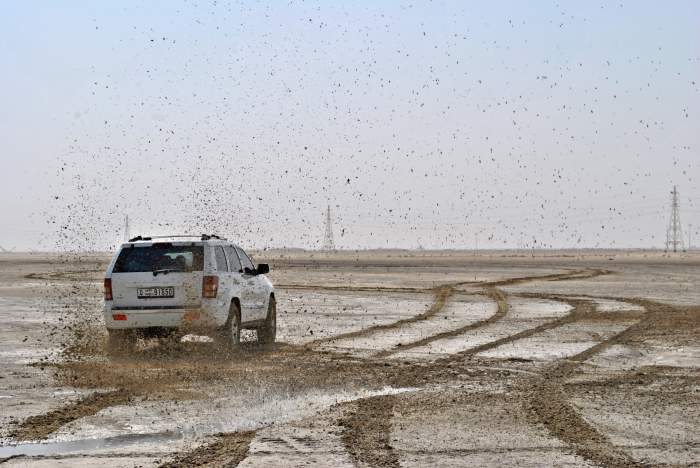 Un șofer din Vrancea, amendat de polițiști pentru că murdărit carosabilul cu noroi