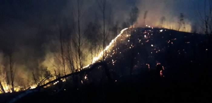 Incendiu uriaş în Bihor! Pompierii s-au luptat 6 ore cu flăcările / FOTO