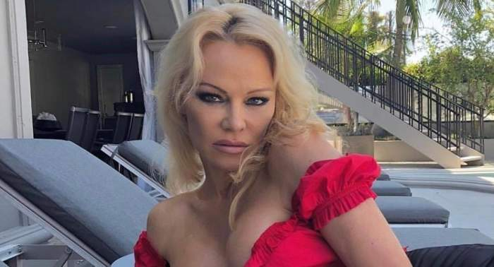 """Pamela Anderson îi pune la zid pe milionarii care au donat pentru reconstrucția Catedralei Notre Dame: """"Să le apară numele în ziare"""""""