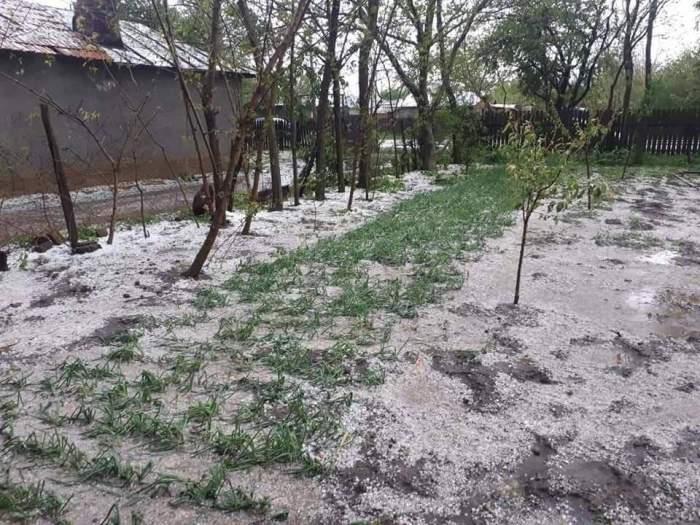 Imaginile prăpădului, în Buzău. Tornada gigant a măturat tot în cale. FOTO