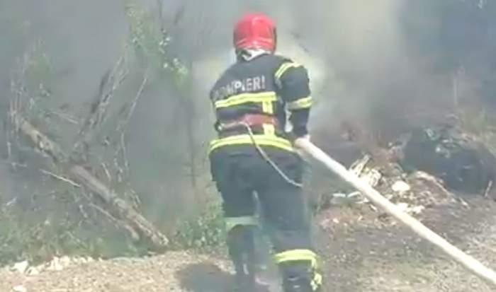 Incendiu de proporții, într-o zonă de vegetație din Tulcea! Un bărbat a suferit arsuri grave