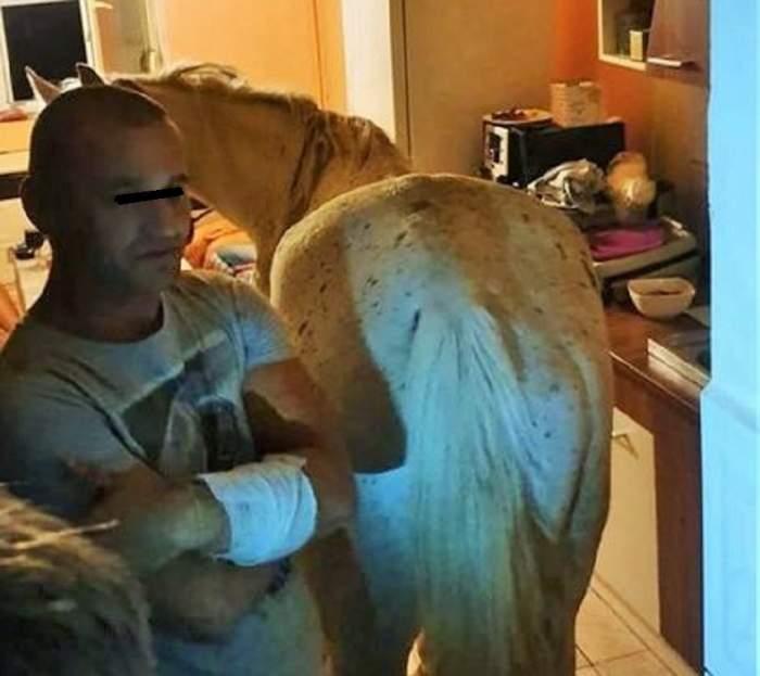 Un bărbat din Satu Mare îşi ţine calul în bucătăria apartamentului. Vecinii sunt revoltaţi