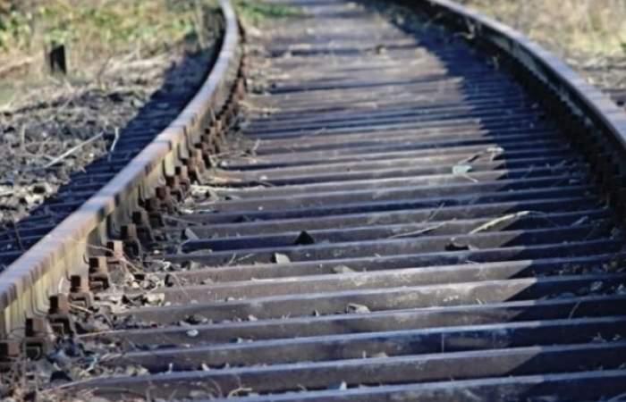 Un copac a căzut pe șinele de tren, la Arad! Circulația a fost oprită