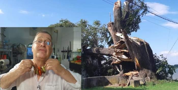 Pagubă pentru Mircea Dinescu. Furtuna de noaptae trecută i-a distrus casa pe care o are pe malul Dunării