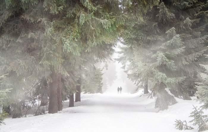 Prognoza meteo, 23 ianuarie. Cum va fi vremea în Bucureşti, Constanţa, Cluj sau Iaşi
