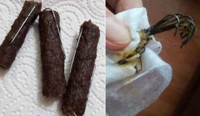 Descoperire șocantă în Baia Mare. Cârnați cu ace, lăsați pe străzi pentru a ucide câini și pisici