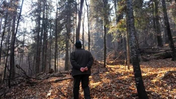 Tânăr din Botoșani, împușcat accidental în timp ce se afla în pădure