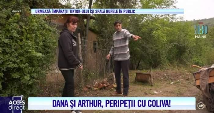Arthur de la Ceptura și-a făcut solar pe mormântul pisicii! Cum l-a răsplătit Vulpea Dana pentru efortul depus! / VIDEO