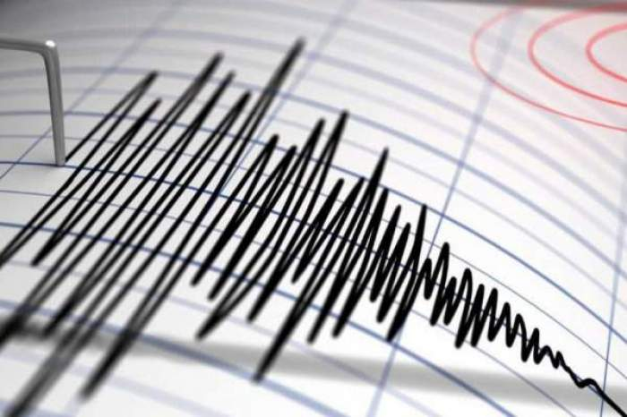 Imagine care măsoară cutremurul pe scara Richer