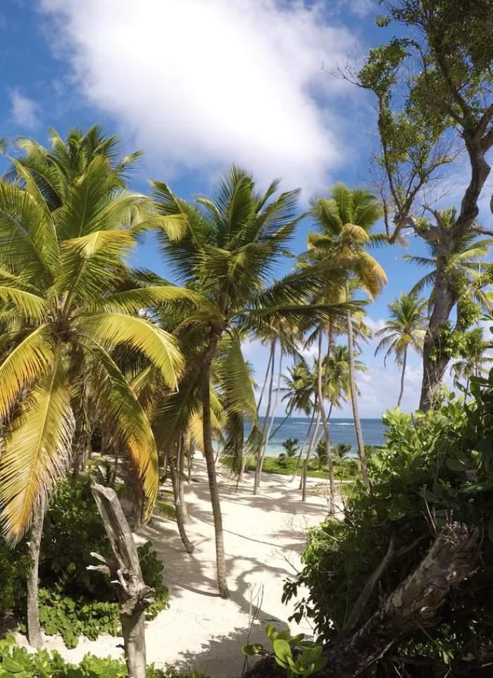 Plajă în Caraibe