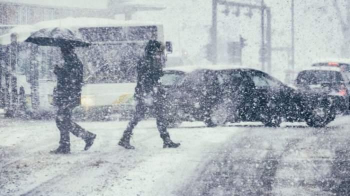 persoane aflate cu umbrelele în zapada