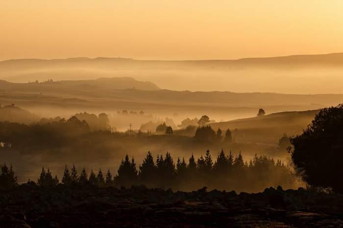 Cod galben de ceață în trei județe din țară! Prin ce zone nu ar trebui să treacă șoferii pentru a evita accidentele