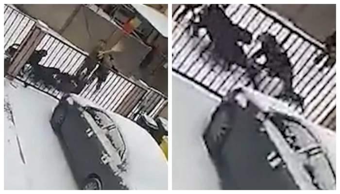 O femeie a fost atacată de patru rottweileri, pe o stradă din Suceava! În ce stare se află acum victima! Proprietara se apără
