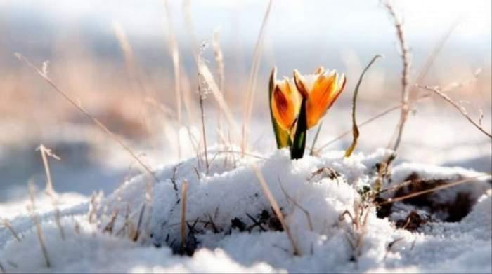 ANM a anunţat! Cum va fi vremea până pe 10 martie. Ploile şi ninsorile îşi vor face simţită prezenţa