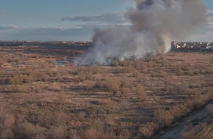 UPDATE / Incendiul din Delta Văcărești, din Capitală, a fost stins după 4 ore