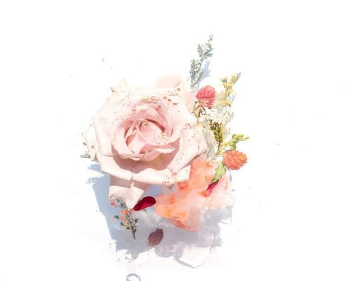 Daca vrei sa ii daruiesti iubitei trandafiri, mai bine alege trandafiri criogenati!