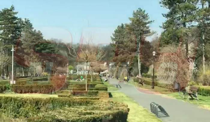 VIDEO / În plină pandemie de coronavirus, bucureștenii au ieșit la iarbă verde în Pădurea Băneasa