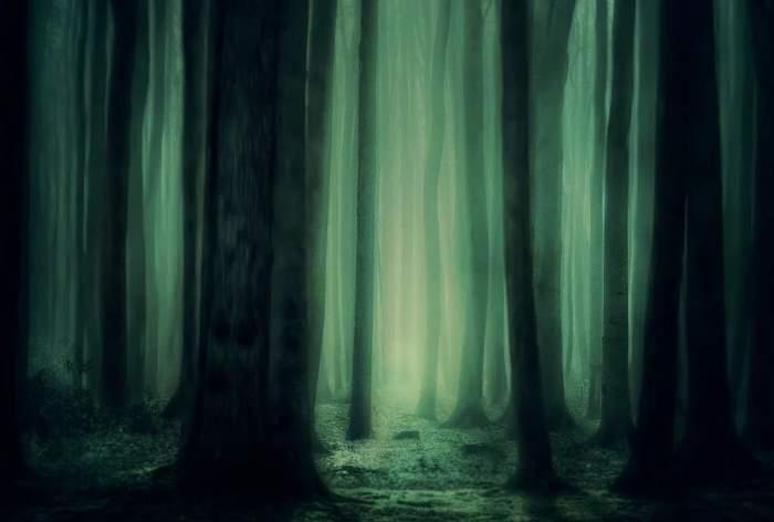 Şocant! Un tânăr de 25 de ani s-a spânzurat într-o pădure, la Năvodari