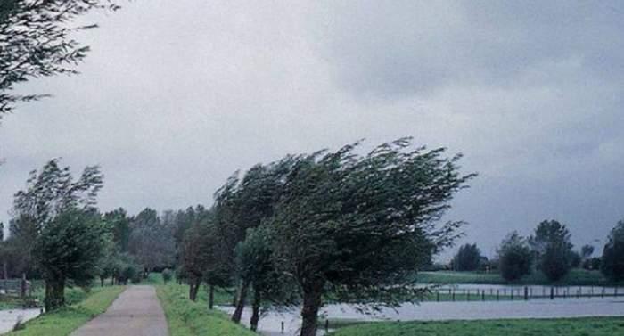 ANM a emis cod galben de vânt puternic și vijelii pentru mai multe regiuni ale țării