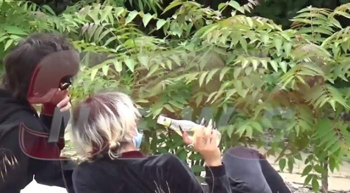 VIDEO PAPARAZZI / Imagini șocante! Maimuța Margheritei, lovită în plină zi. Vedeta bea și se sărută cu iubitul fără pic de rușine!