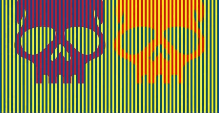 Testul care a înnebunit planeta! Ce culoare au, de fapt, cele două cranii?