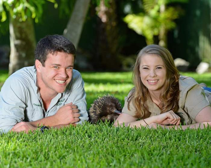 Bindi Irwin este însărcinată! Când se va naște nepoțelul regretatului zoolog și om de televiziune, Steve Irwin / FOTO