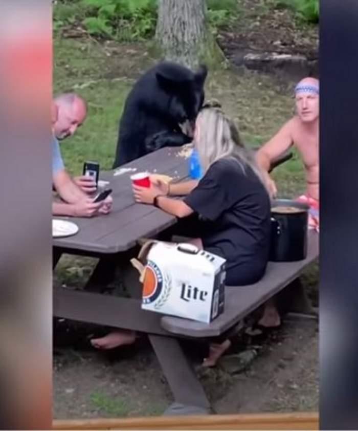 Imagini inedite cu familia care stă la masă cu un urs! Turiștii aflați la picnic au chemat animalul să mănânce cu ei / VIDEO