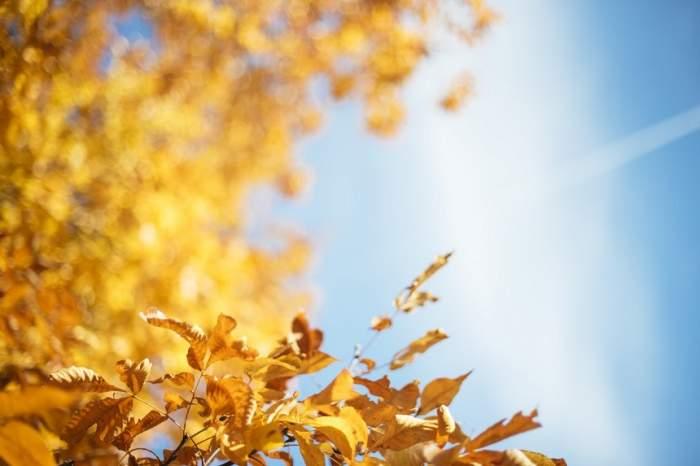 Meteorologii au anunțat cum va fi vremea în luna septembrie. Zonele estice și sud-estice sunt cele vizate