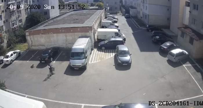 Copil atacat in parcarea unui bloc de o haita de caini din zona