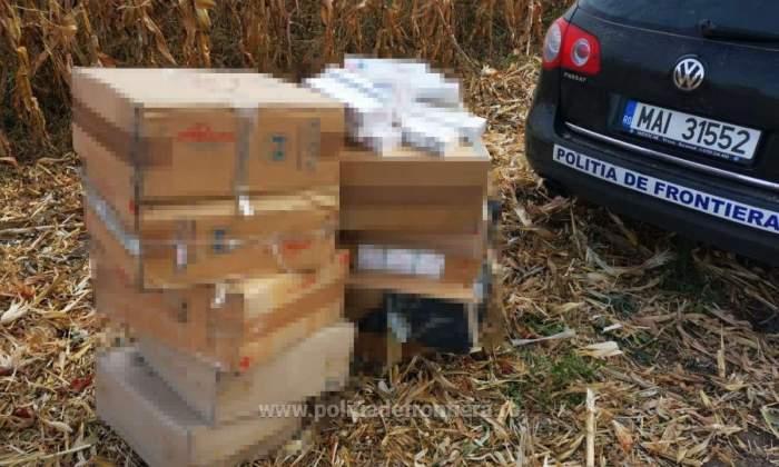 Urmărire cu focuri de armă ca în filme, în Botoșani. Un contrabandist de țigări și-a incendiat mașina, apoi a fugit prin porumb