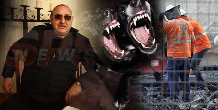 Petre Geamănu, acuzat că a aruncat la câini doi muncitori nepalezi / Bărbații încercau să fure de la fiorosul lider interlop