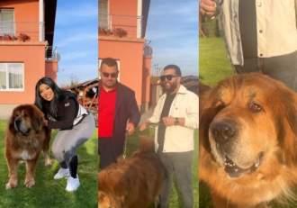 """Tzancă Uraganu, o nouă aroganță de proporții?! Celebrul manelist și-a șocat fanii: """"Un câine de două milioane de euro"""" / FOTO"""