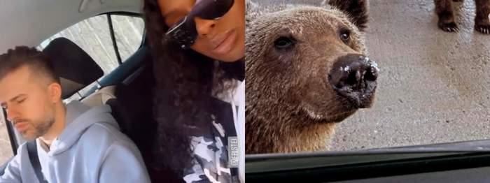 florin ristei cu iubita in masina, colaj ursi