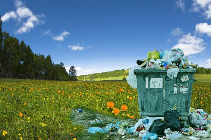 un cos de gunoi pe iarba