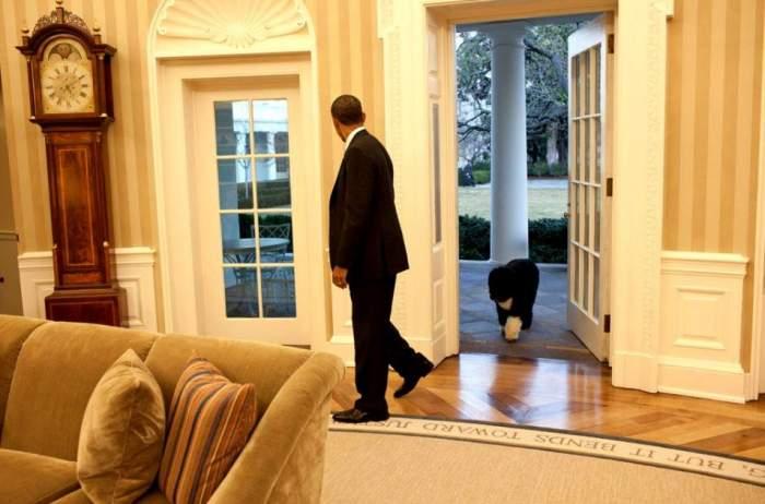 """Doliu în familia lui Barack Obama. O ființă dragă fostului președinte al Americii a murit: """"Ne va fi dor de el"""" / FOTO"""
