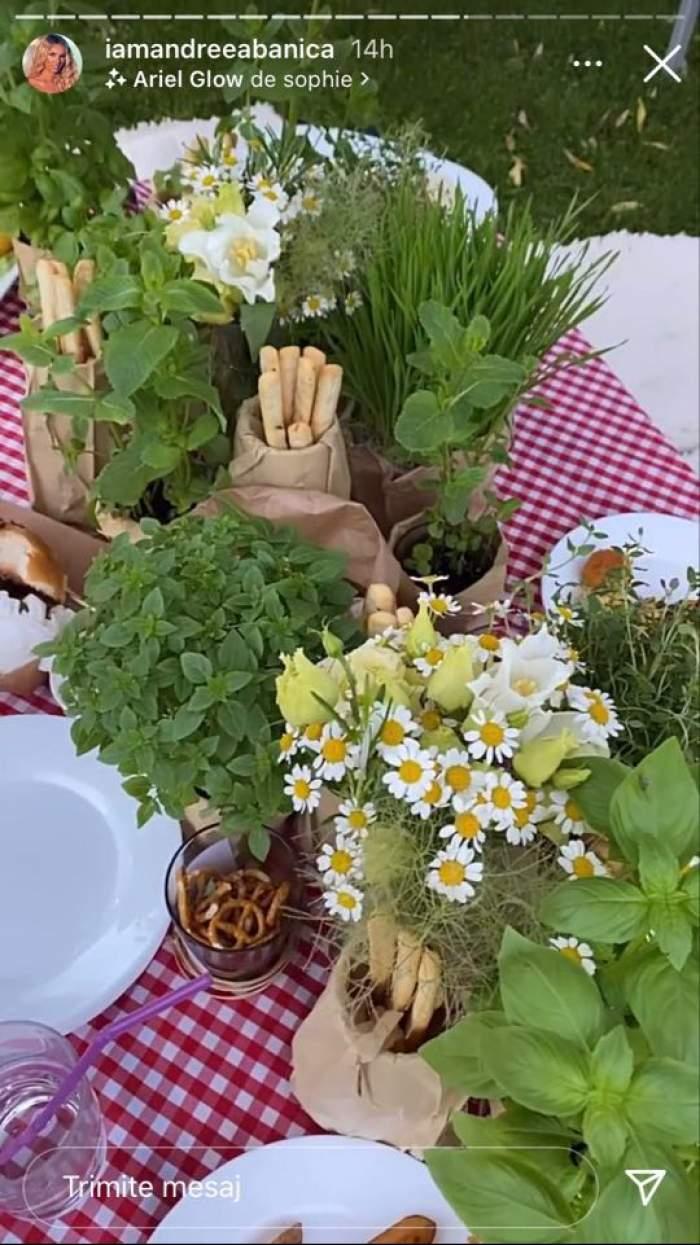 Mâncarea de botezul fiicei lui Smiley și a Ginei Pistol este servită sub formă de picnic și ornată cu verdețuri și mușețel. Se văd niște grisine și covrigei.