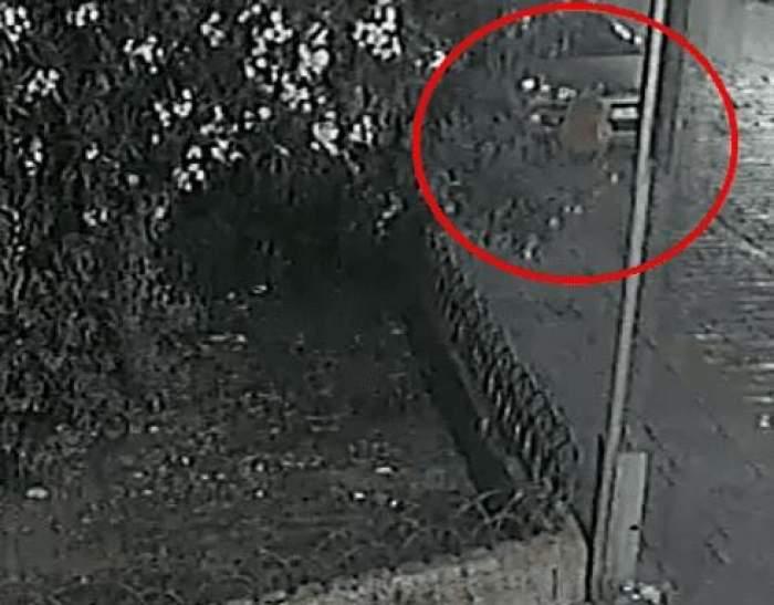 Scene șocante în Italia. Unui român i-au luat foc pantalonii de pe el în timp ce incendia mașinile italienilor