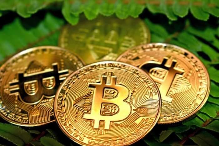 Milionarul în Bitcoin Mircea Popescu a murit. Tragedia s-a petrecut în Costa Rica