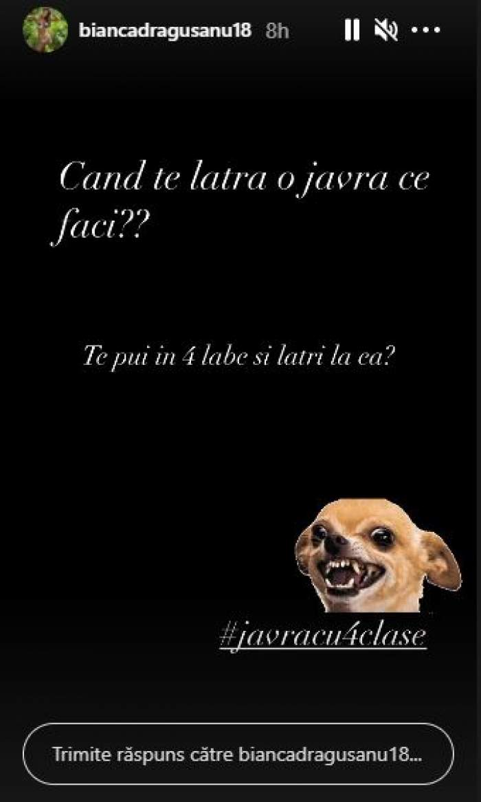 Captură cu mesajul postat de bianca drăgușanu.
