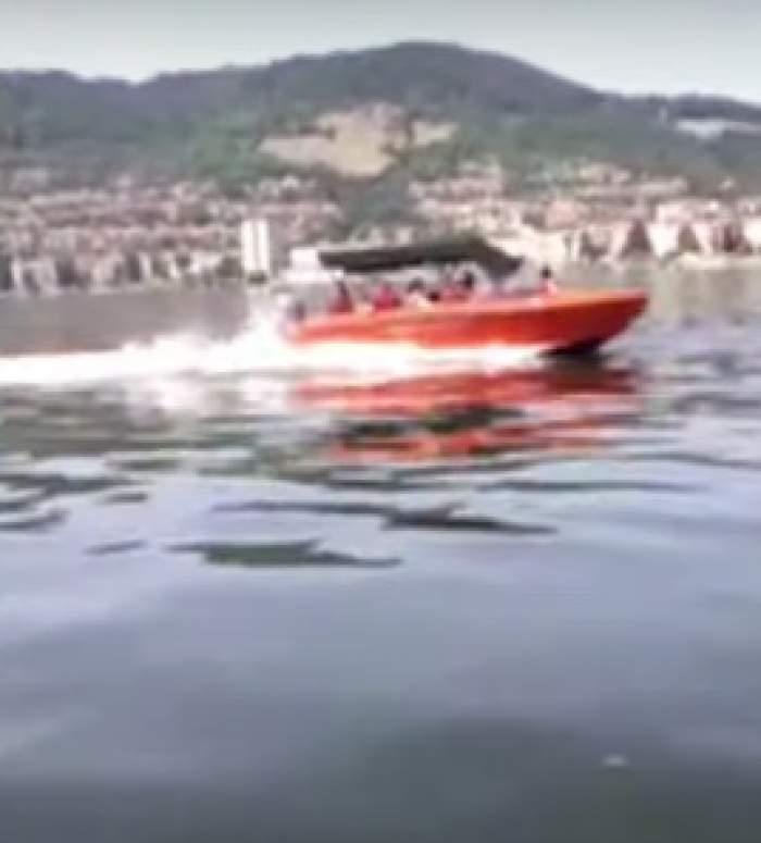 Imagini terifiante pe Dunăre. O barcă în care se aflau copii a fost ruptă în două de o șalupă / FOTO