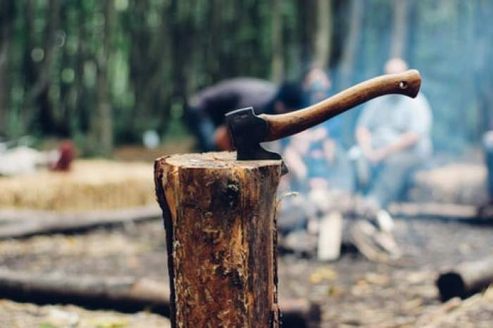 O instanță din Alba a condamnat la închisoare un bărbat mort. Defunctul tăiase lemne din pădure pentru a-și îngriji mama bolnavă