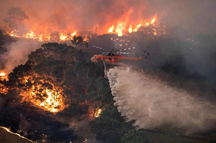 Canicula face prăpăd în Rusia. 800.000 de hectare de pădure au ars în urma incendiilor de vegetație