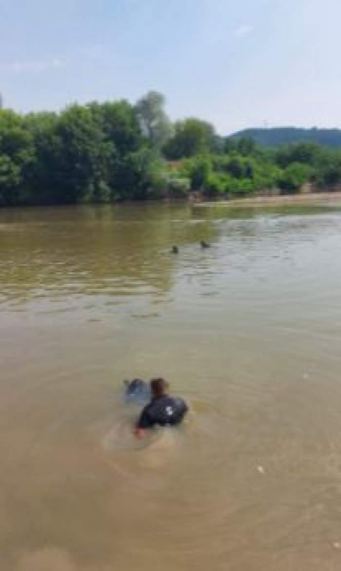 Salvatorii căutând victimele în râul Mureș