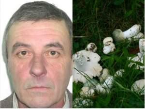 Un bărbat din Gura Humorului a fost găsit mort, după ce a plecat să culeagă ciuperci din pădure. Care a fost cauza decesului