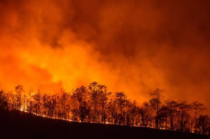 Clipe de groază în Sardinia! Peste 1500 de oameni au fost nevoiți să își părăsească casele pentru a scăpa cu viață din incendiile de vegetație mistuitoare